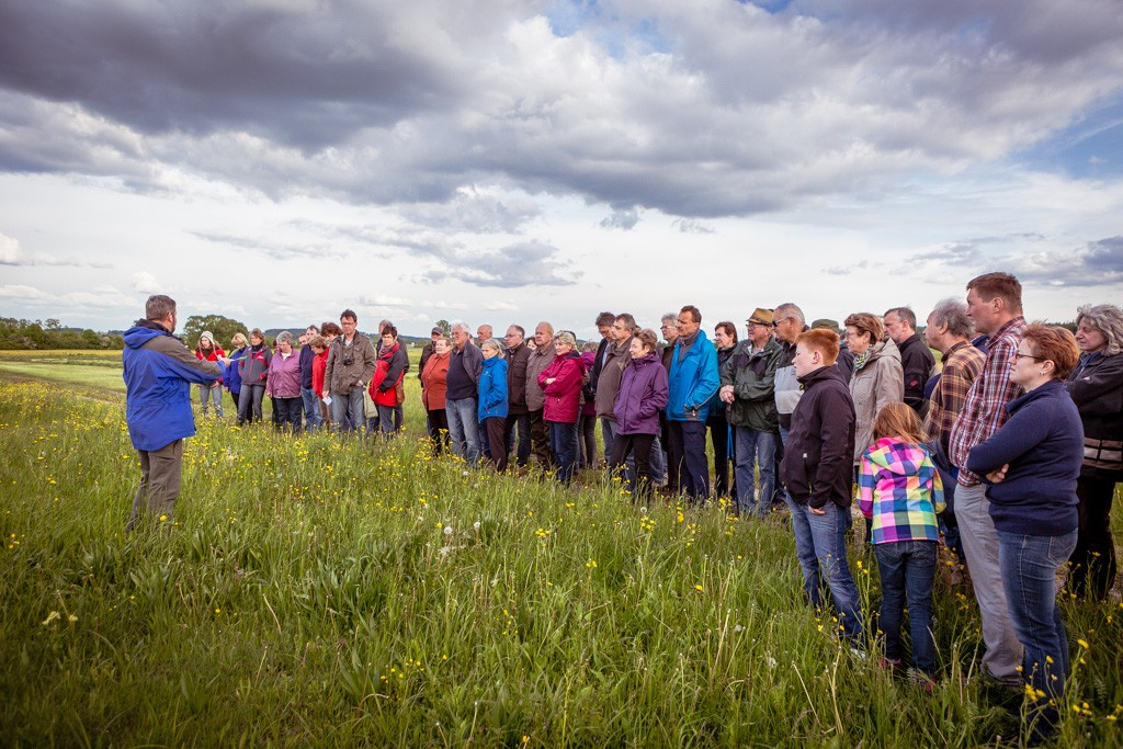 Read more about the article Wildblumenwanderung 2014