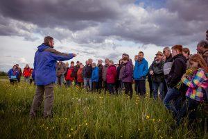 Wildblumenwanderung Wildenholz 2014